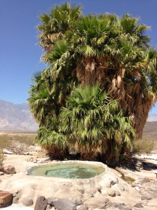 The next hot spring was built up around the 60s and was nicer. The palms there created a cool little chill room in the shade.
