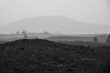 Busting out of the dense forest I came upon this super smokey and stark landscape.