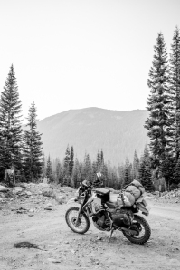 Getting lost in the forests to the east of Mt Shasta. Turns out they are all just commercial forests and not that nice really (roads were fun though).